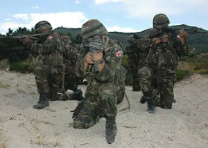 turkish_army_nato_exercise